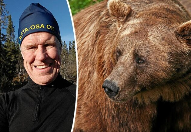 Thomas Ericson från Alfta i Hälsingland attackerades av en björnmamma.