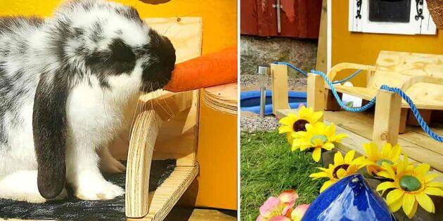 Pool, garage och parasoll! Är det här Sveriges lyxigaste kaninhus?