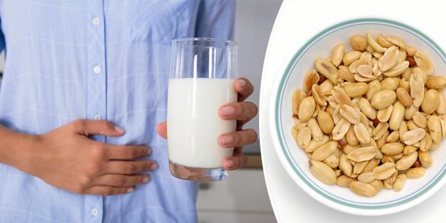 Nytt hopp för allergiker – så kan matallergi tränas bort!