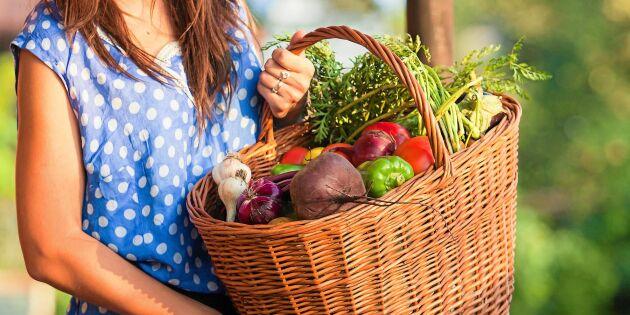 Odling på beställning från grannarna blir allt mer populärt