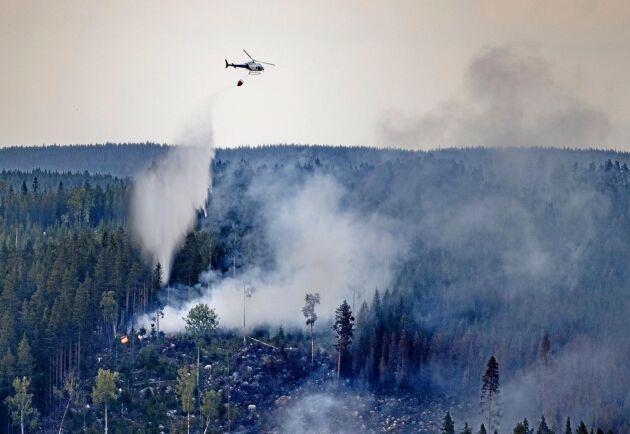 Holmen drabbades av skogsbrand på 2 000 hektar produktiv skogsmark – något som beräknas kosta bolaget upp emot 30 miljoner kronor.