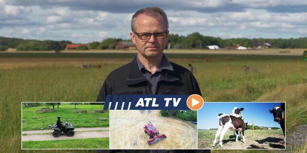 ATL TV: Många maskinbränder i skörden