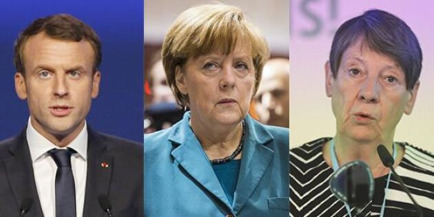 Sprickor i Europapolitiken efter glyfosat