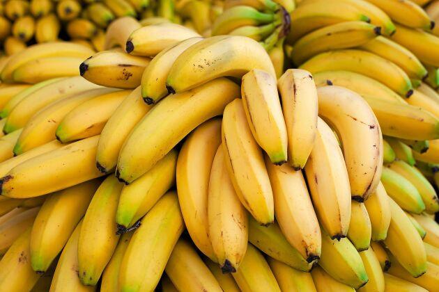 Det tog ett tag innan man lärde sig rätt transportförhållanden för att bananerna skulle hålla sig bra.