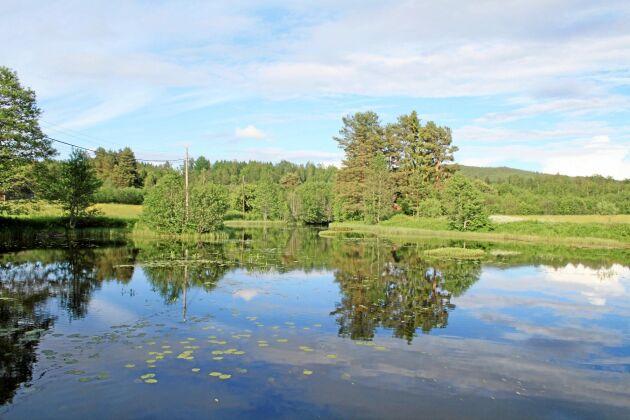 Kammarkollegiet, Älvräddarna och Sportfiskarna överklagar mark- och miljödomstolens dom att tillåta fortsatt verksamhet för vattenkraftverket i värmländska Silverforsen.