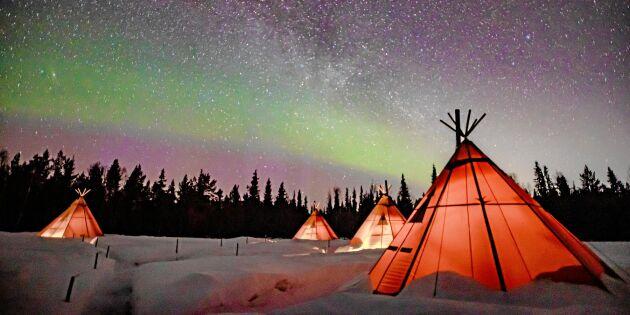 Lennarts samiska kåtor under norrskenet har blivit en turistsuccé