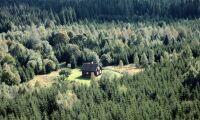 Så lönsamma är Sveriges skogsgårdar