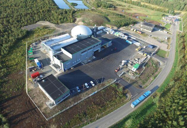 I HZI:s nya biogasanläggning för 300 miljoner kronor söder om Jönköping rötas julgranar tillsammans med matavfall till fordonsgas.