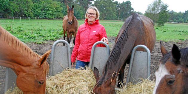 Grovfoderbrist slår hårt mot hästägare