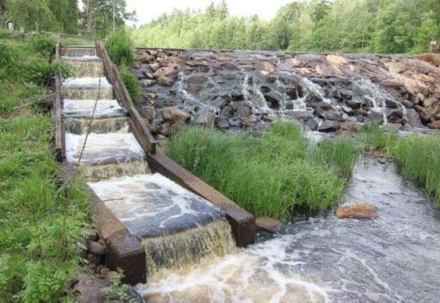 Den nationella planen för småskaliga vattenkraftverk ger anledning till oro, skriver ATL:s Greger Ekman.