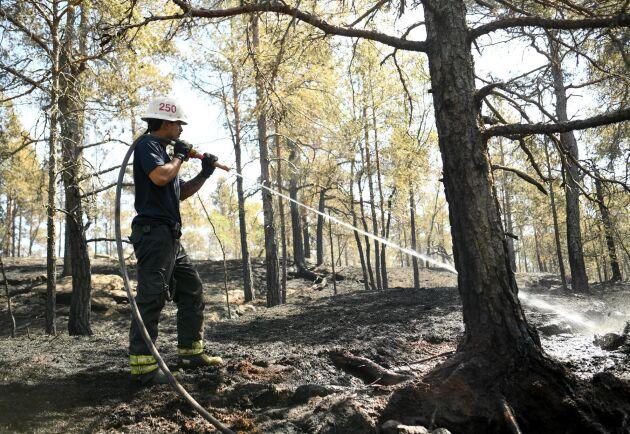 Ny teknik ska hjälpa till att upptäcka bränder i ett tidigt stadium. Arkivbild.