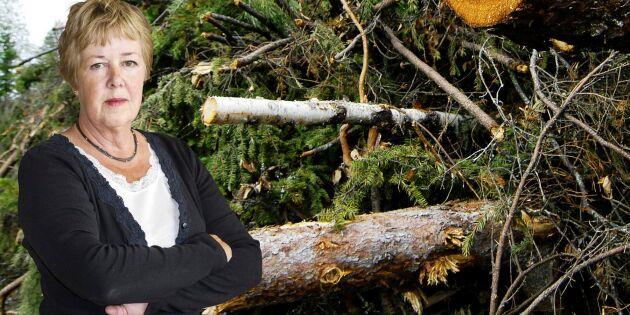 """""""Mindre snack och mer verkstad i klimatpolitiken"""""""