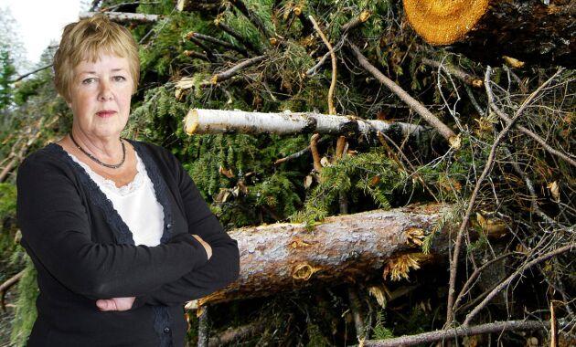 Kerstin Davidson, ledarskribent i Land Lantbruk.