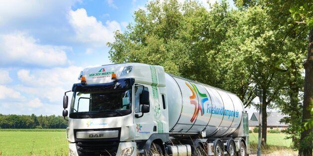Holländska mjölkpriset rasar