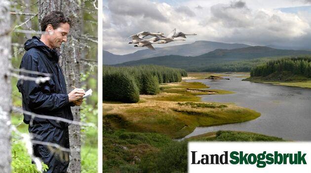 Mats Ostelius, skogsreporter, ser fram emot att lära mer om det skotska skogsbruket – tillsammans med intresserade läsare.