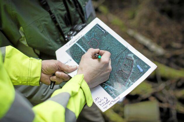 Noggrann planering med bland annat vattenkartor som visar blöta markområden kan minimera markskador vid en avverkning, enligt Skogforsk.