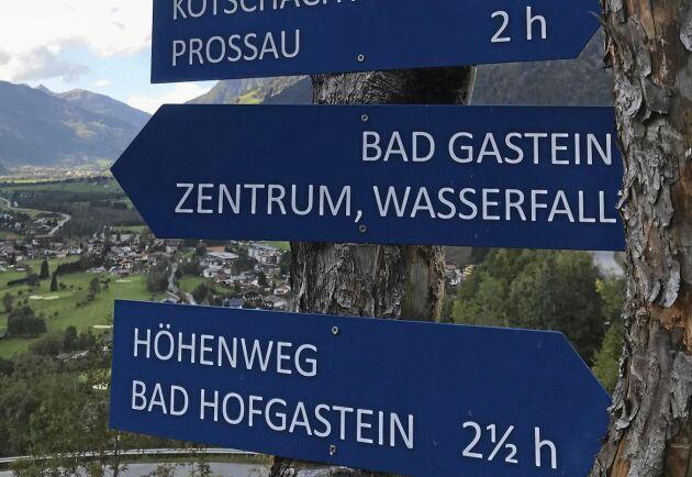 """""""Vilken väg ska vi vandra?"""""""
