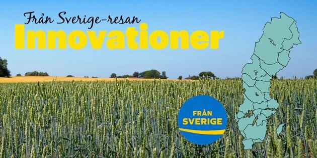 13 smarta matuppfinningar i Sverige – som du kanske inte hade koll på