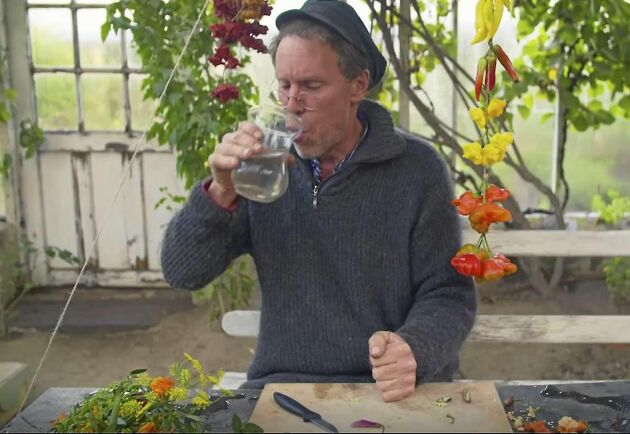 Upp med blomstren ur vasen. Gustav Mandelmann har just knaprat i sig av en riktig chili-kejsare!