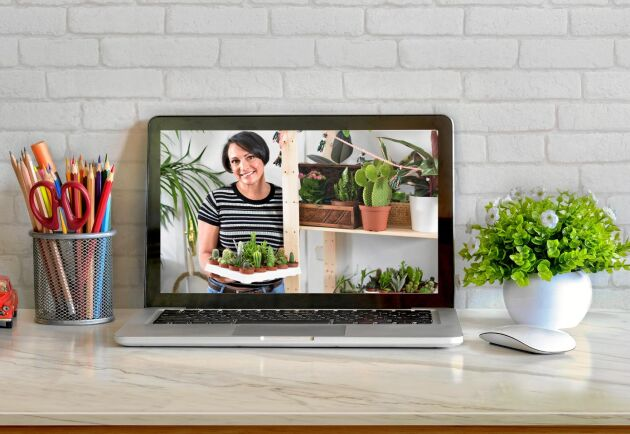 Byt växter på nätet. Trenden som gör det lättare att hitta drömväxten.