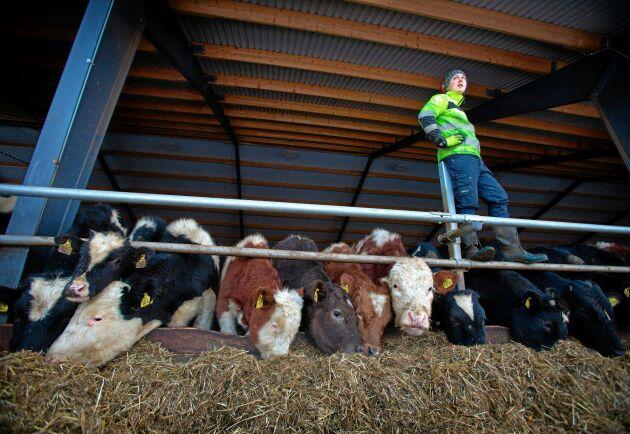 """""""Nu börjar gården generera pengar och jag behöver inte längre vara stressad över ekonomin"""", säger han."""