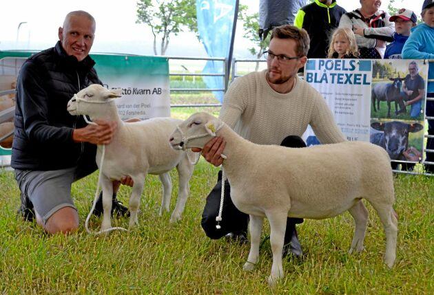 Jan och Alexander Melkersson från Rimforsa deltog i utställningen med två vita dorperfår.