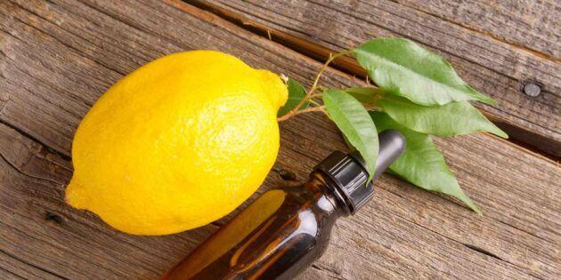 Gör möbelpolish med citron och olja– grymt till trämöbler
