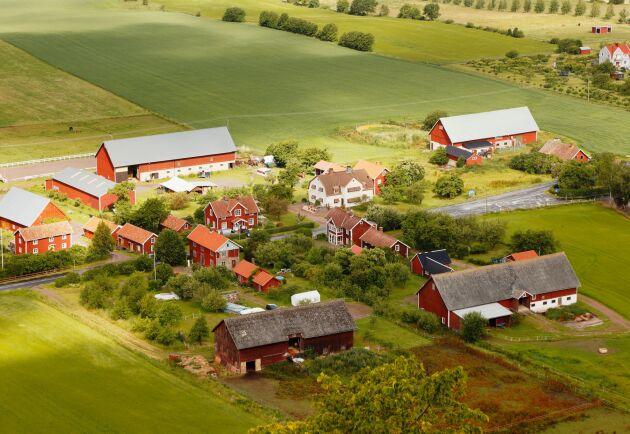 Landsbygdsprogrammet kommer att minskas med runt 230 miljoner i år.