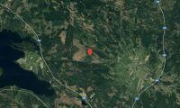 Skogsfastighet i Jämtland såld