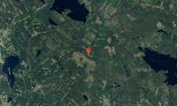 Ny ägare till skogsfastigheter i Dalarna