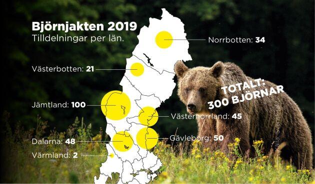 Så är björnarna tilldelade länsvis.