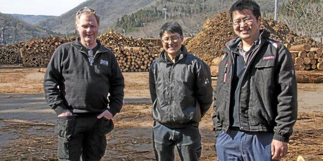 Svenska råd ska få fart på skogsbruk i Japan