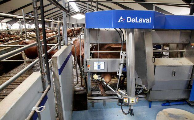 Debattörerna Sveriges mjölkbönder vill att SLU prioriterar upp inriktningen mot produktivitet i utbildningen.