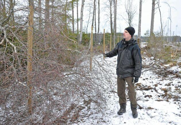 Alfrida krävde sitt offer. Jonas Larsson tar sig en titt på det nedrivna stängslet.