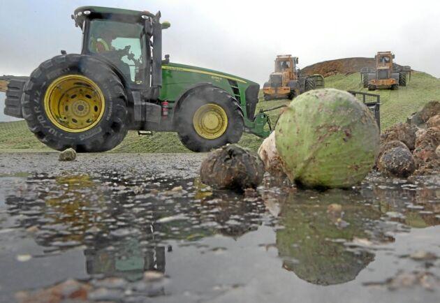 I dag drivs biogasanläggningen i Jordberga främst av biologiska restprodukter som kasserade grönsaker och avrens, men ägarna vill utveckla verksamheten med gödsel och slaktavfall.