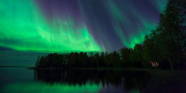 Titta upp! Nu kan du se norrsken i Skåne