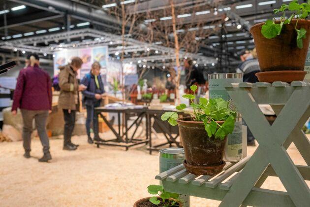 Nordiska Trädgårdar 2020 ställs in till följd av coronaviruset.