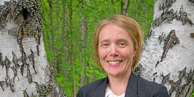 """""""Försöker hitta något som enar skogbruket och miljörörelsen"""""""