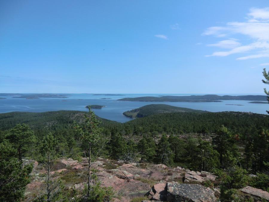 Mjältön, Västernorrland. Foto: Annelie Eriksson.