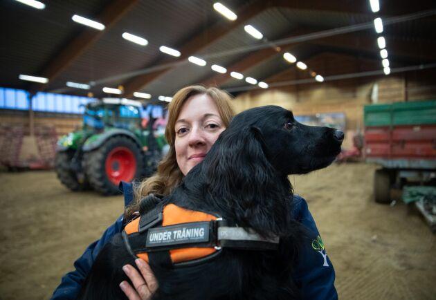 Hundläraren Elin Karlsson är en av de som bidrar med sin kompetens i ett projekt där man ska utröna vilken nytta specialsökhundar kan göra inom växtodlingen. Hennes hund Alex är idag specialist på att hitta vägglöss.