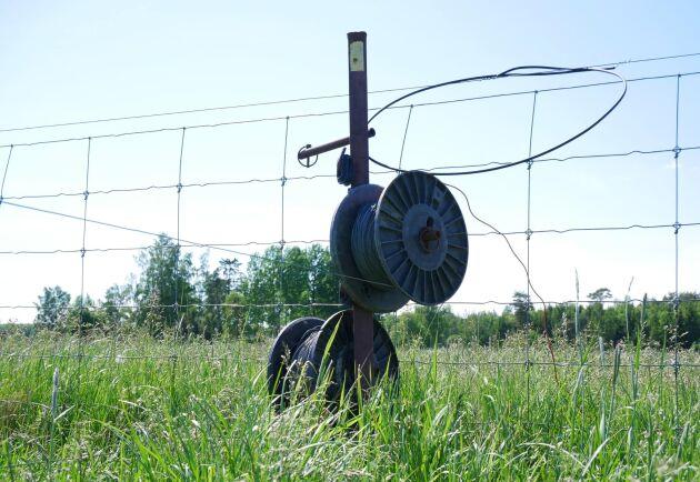 Det finns staket runt nästan alla fält på Norrby gård för att förenkla förflyttningen av djuren.