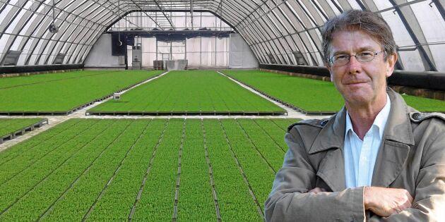 Ökad plantproduktion och bättre gränskontroll mot sjukdomar