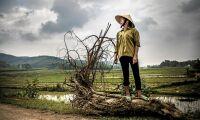 We Effect: Jordbruksbiståndet borde öka