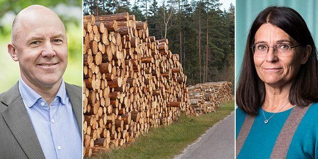Skogsindustrierna: Regeringen vill begränsa skogsbruket