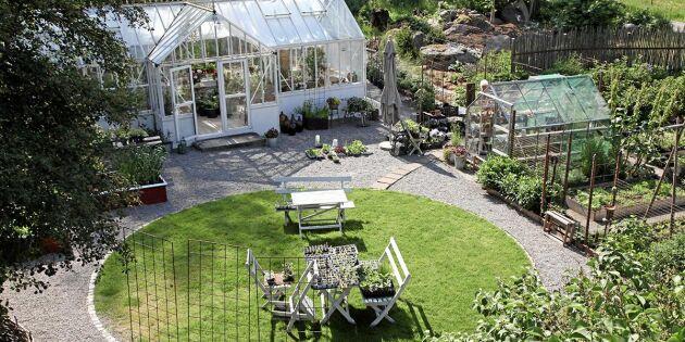 LISTA: Öppen Trädgård den 21 juli – här är alla trädgårdar du kan besöka