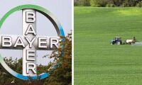 Bayer tar över - skrotar namnet Monsanto