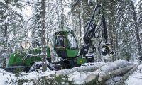 EU-förslaget en attack på svenska skogsägare