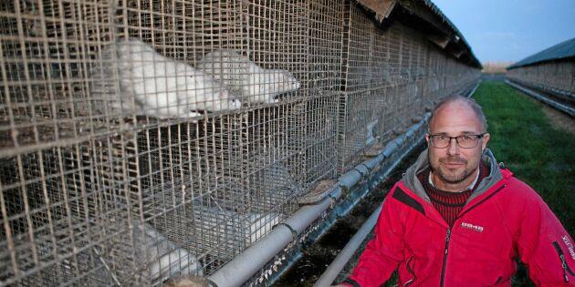 Misshandlades av inkräktare på minkgården