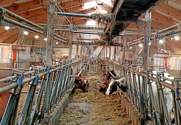 Allt fler lantbrukare i Finland hotas av utmätning. Lantbruket på bilden har inget med artikeln att göra.