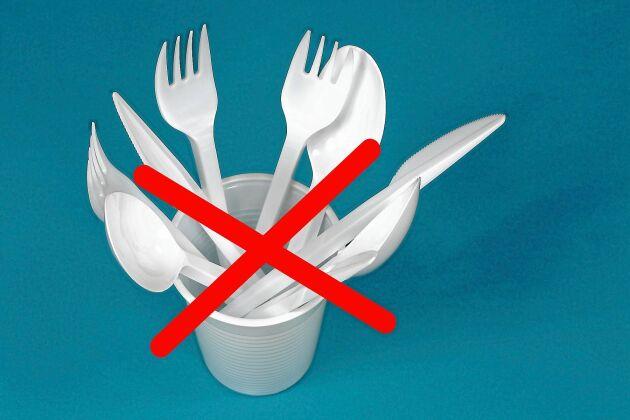 Engångsprodukter i plast är en av de absolut vanligaste nedskräparna. Nu förbjuds en rad av dem.